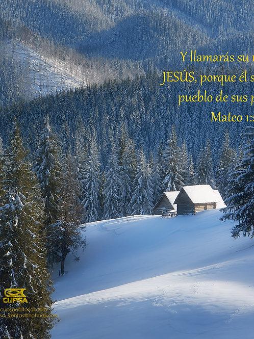 Boletin Navidad cabaña