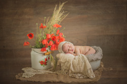 book fotografici newborn monza