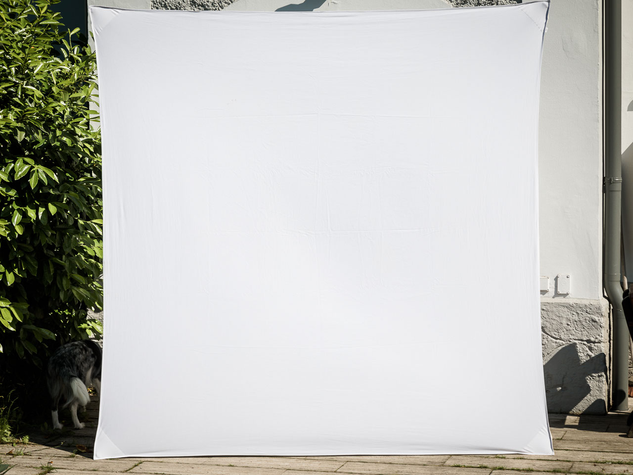 Hintergrund Fotobox mieten