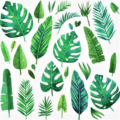 jungle leaves.jpg