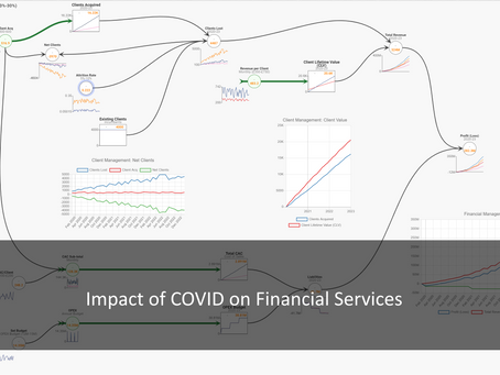 Systems Thinking & Systems Dynamics: COVID