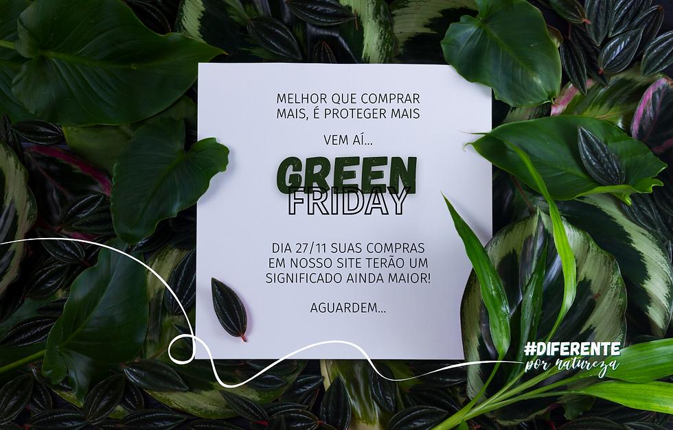 Cópia de GREEN FRIDAY.png