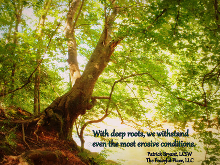 The Deep Roots of Resiliency