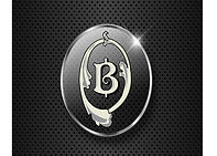 Buy The Block Black Logo