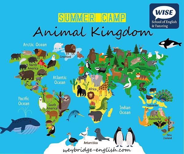 Animal Kingdom Summer Camp at WISE
