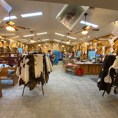 Longhorns Head To Tail Store