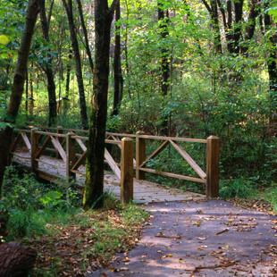 Barkcamp State Park