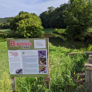 Captina Creek Birding Trail