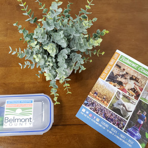 Belmont County Tourism launches geocaching campaign
