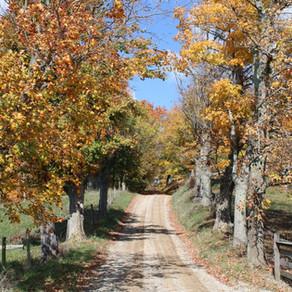 Take a Fall Foliage Road Trip to Belmont County, Ohio