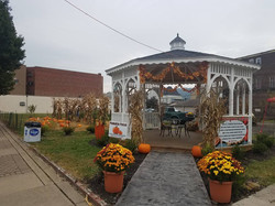 Martins Ferry in Fall