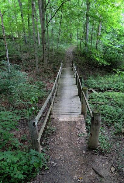 Barkcamp Walking Trail.jpg