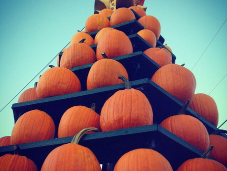 The Barnesville Pumpkin Festival - How it all started
