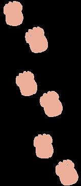 pawprints-21.png
