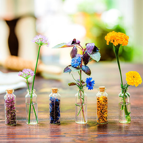 Edible Flower Sprinkles - Sweet + Savory Combo Pack