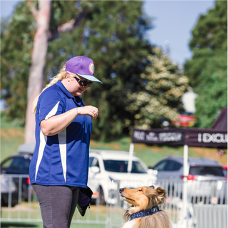 Dogs at Pawsitive Steps 2019