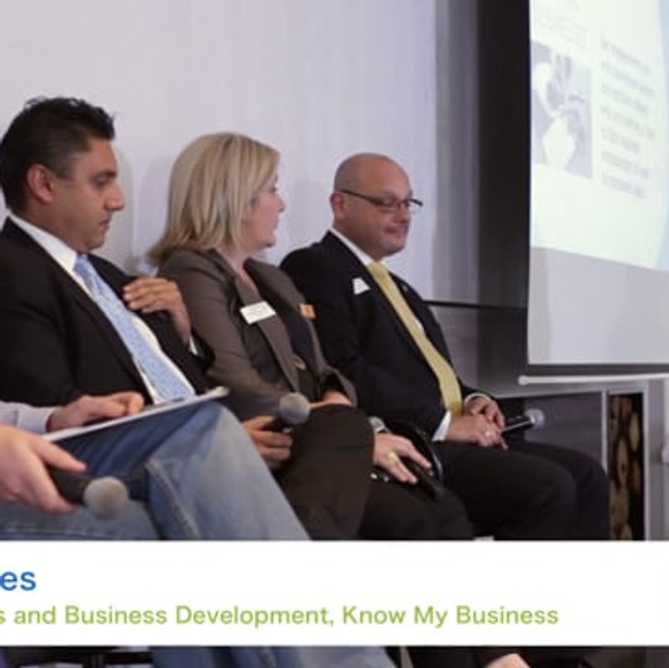 Going Global, Panel Discussion