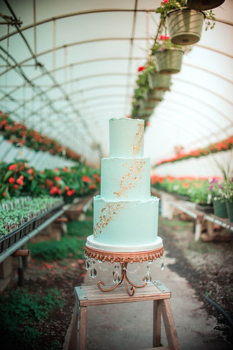 Wedding cake bakery Roanoke VA blue wedding cake Salem Bedford Botetourt Franklin County