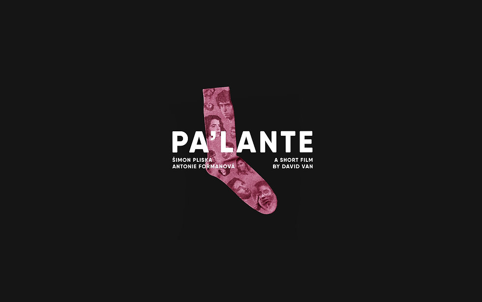 palante_web_1920x1080_WIX.jpg