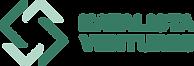 KV Logo (1).png