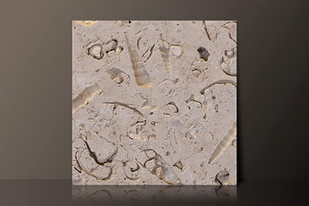 portland bowers roach limestone tile