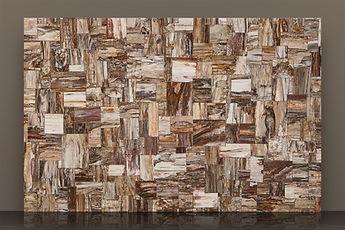 prexury retro petrified wood semi-precious slab