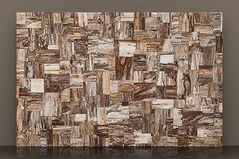 Prexury Retro Petrified Wood Semi-precious Slab