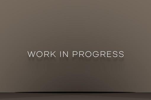 work-in-progressjpg