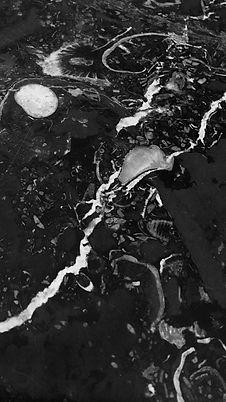 POOIL-VAAISH-FOSSIL-HONED-LIMESTONE-SLAB_2.jpg