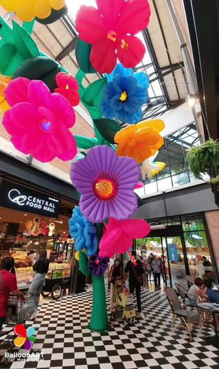 Summer Flower(ดอกไม้หลากสี)