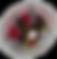 Fairfield Falcons logo