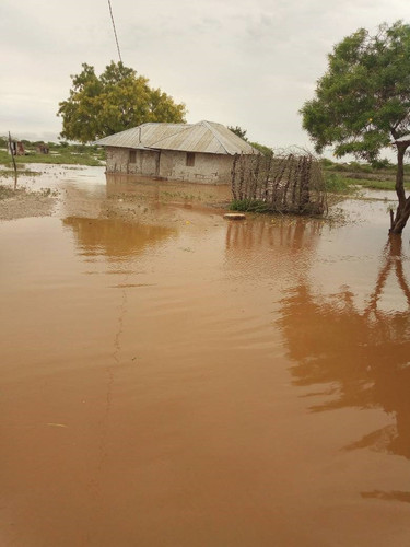 Flooding Tragedy in Toloha