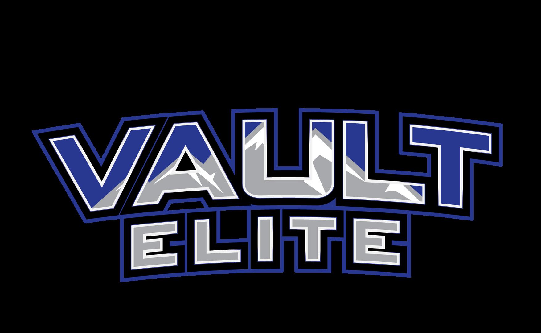 VaultElite_Logo_Wordmark-Flat (PNG)-01.p