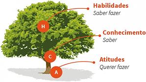 Arvore_Conhecimento_Habilidade_Atitude.p