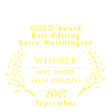 Corrosion GOLD Award best Editing NYC In