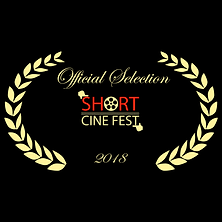 Bummer Short Cinemfest Official Selectio