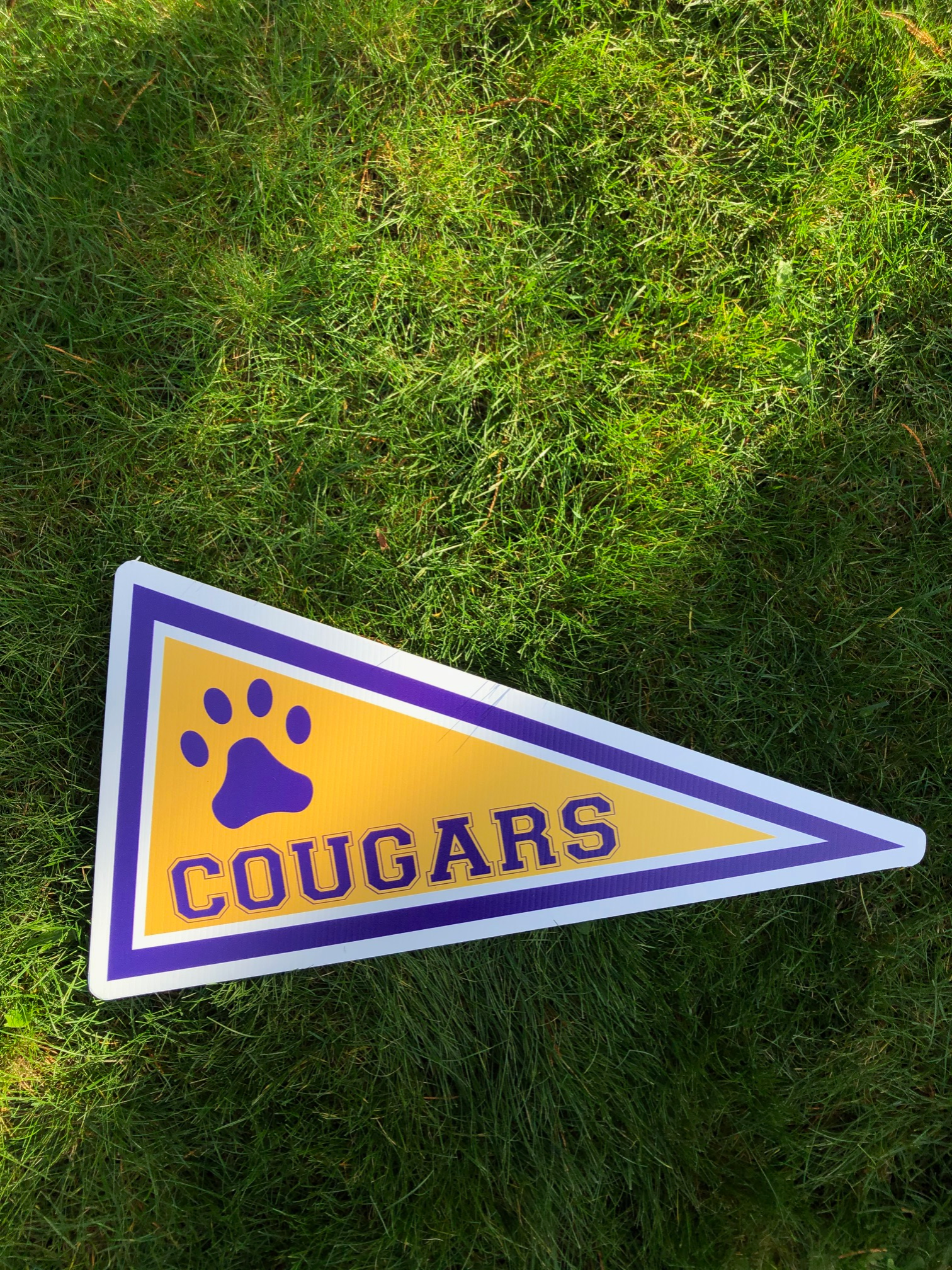 Cougars Pennant
