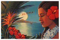 aloha-al-chiaro-di-luna