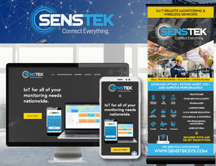 Sentek Systems