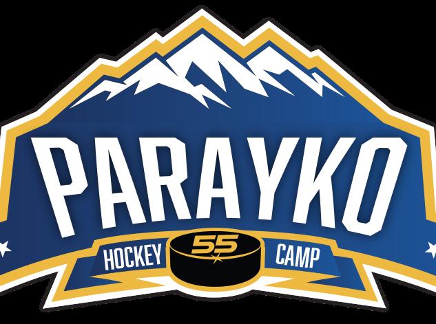 Parayko Logo Gradient.png