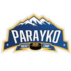 _0013_Parayko Gradient Logo _Vector.jpg