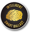 Intelligent-Icon.png