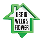 H&G-icon-week-5-flower.png