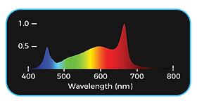 660w-Spectrum.png