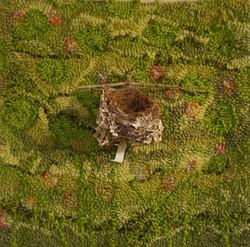 Hooked rug, forest, bird's nest