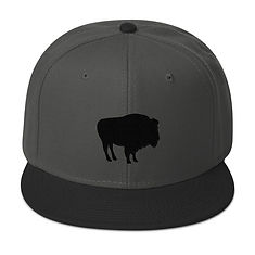 The Rockies Collection - Bison - Snapback Hat (Multi Colors) The Rocky Mountains