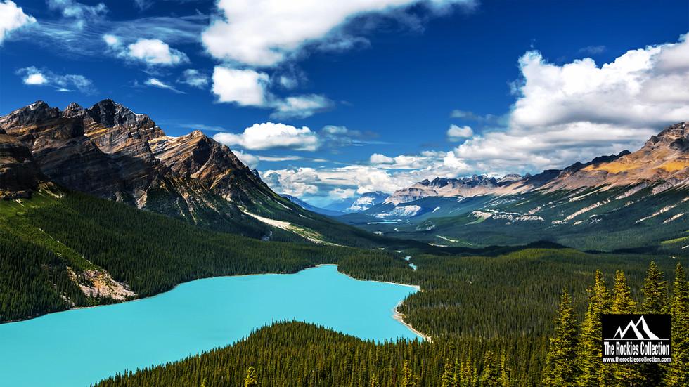 PEYTO LAKE - BANFF CANADIAN ROCKIES