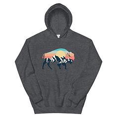 Landscape Sunset Bison - Hoodie (Multi Colors)