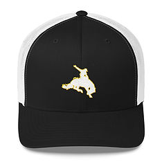 Cowboy - Trucker Cap (Multi Colors)