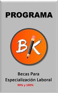 Este es el logo del programa BK
